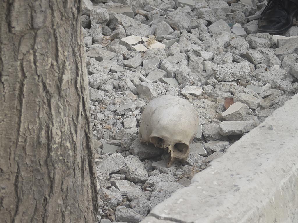 Encuentran un cráneo cerca de una escuela