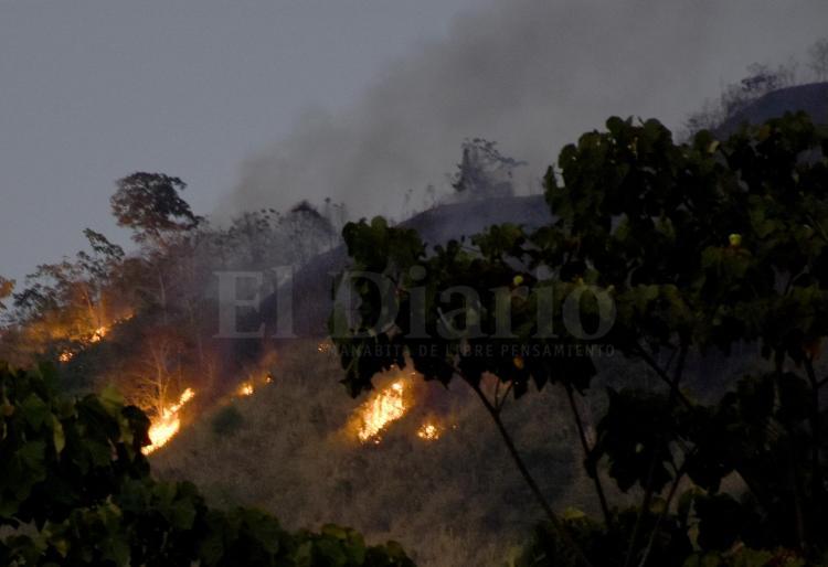 Voraz incendio forestal desata emergencia en Santa Ana