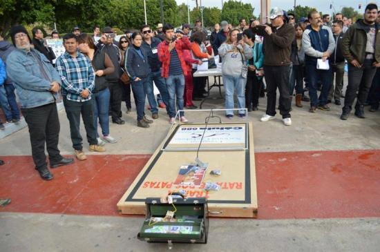 Activistas colocan ratoneras gigantes en casas de políticos en México