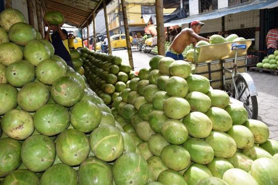 Comerciantes mayoristas se van, pero a su propio terreno