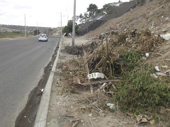 Acumulan basura en calle