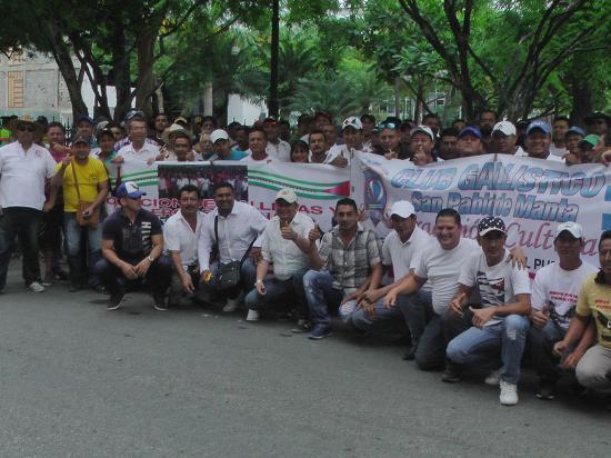 Organizaciones y clubes defienden las peleas de gallos en Manabí