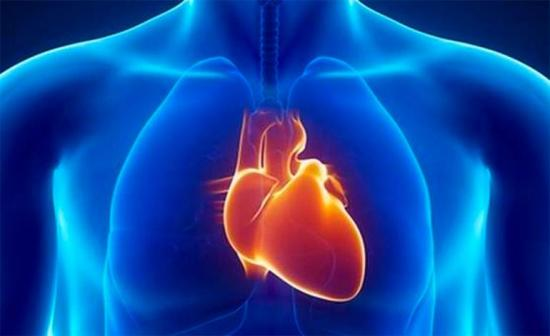 Diseñan en EEUU dispositivo robótico para ayudar al corazón a bombear sangre