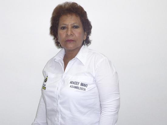 Aracely Bravo: Reformar ley de educación