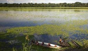 Un sismo de magnitud 5,5 se siente en reserva natural de la Amazonía peruana