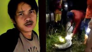 Serpiente pitón se tragó a un joven de 25 años, reportado como desaparecido