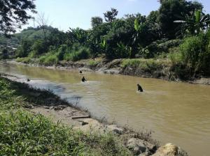 Continúa la búsqueda de un hombre que se habría ahogado en el río Chone