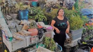 Varias personas de la Sierra han hecho de la provincia de Los Ríos su segundo hogar