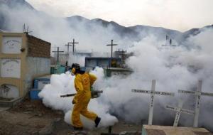 El zika se propagó durante meses sin ser detectado, según estudios