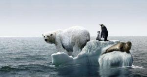 El cambio climático podría llevarnos al suicido, según estudio