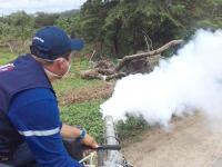 Disminuyen los casos de dengue