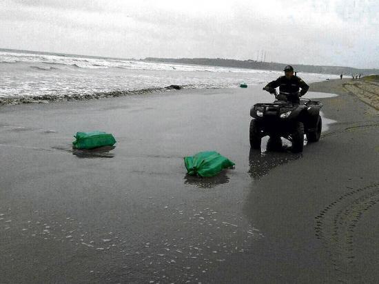 Hallan droga en playa el palmar