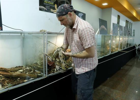 Hombre vive con más de 120 serpientes para borrar la mala fama de estos animales