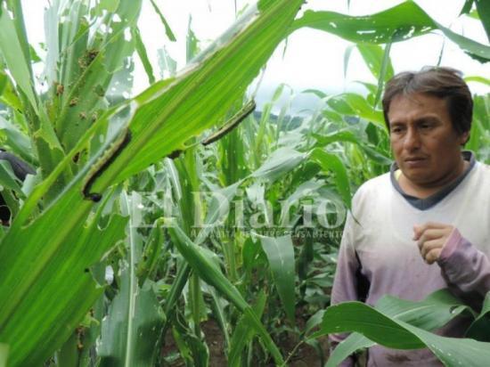 FIDA promoverá desarrollo en zonas rurales de Ecuador afectadas por terremoto