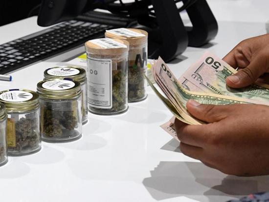 Venta de marihuana genera  millones