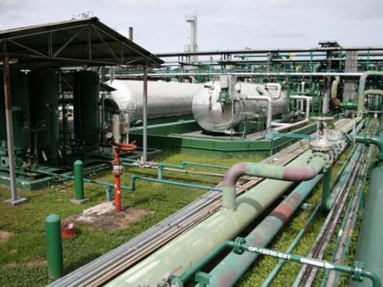 Usan industria ecuatoriana en un 82 %