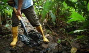 Corte de Apelaciones de La Haya rechaza recurso de Ecuador contra Chevron