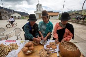 Guajango: Un medicinal 'tequila' que aviva la fiesta en los Andes de Ecuador