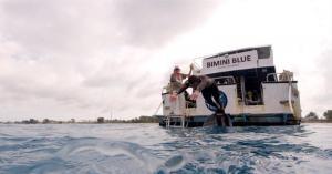 El legendario Michael Phelps pierde su duelo con un tiburón blanco
