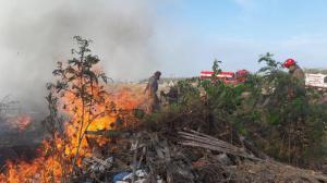 Dos incendios forestales se registran en Montecristi este fin de semana