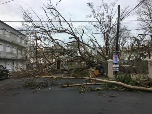 Puerto Rico evalúa los daños de la devastación dejada por el huracán María