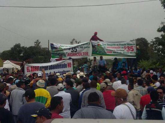 Agricultores reclaman la caída del precio del arroz con movilizaciones