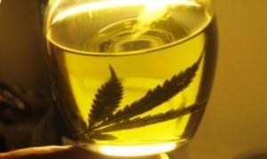 Aceite de marihuana, alivio contra efectos de quimioterapia en cáncer de mama