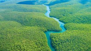 Adolescente con discapacidad sobrevive 28 días en la selva del Amazonas