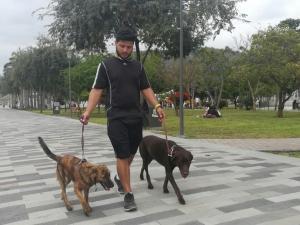 Costeó sus estudios paseando perros