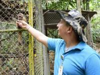 Esperan reproducir especies extinguidas