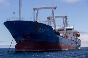 Corte dispone devolución de barco chino hallado con pesca ilegal en Galápagos