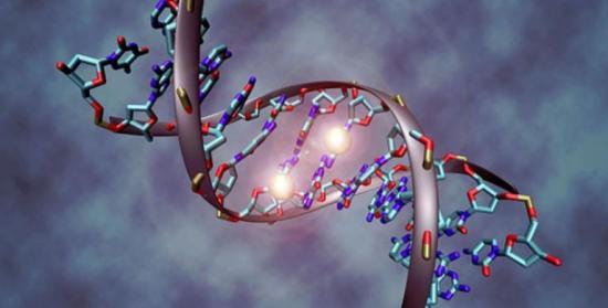 Estudio baraja un posible vínculo genético en la orientación sexual masculina