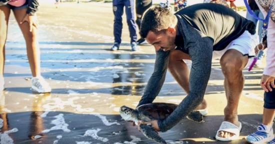 Carlos Tevez reinsertó a una tortuga rescatada en el mar argentino