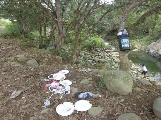 La basura se apodera del río Malicia