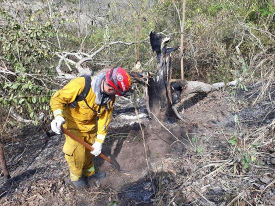 """""""Inauguran"""" el año con tres incendios forestales en Santa Ana"""