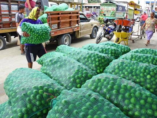 50 unidades de limón se encuentran en un  dólar en el mercado