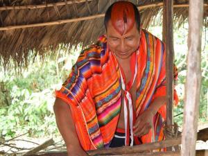 La ayahuasca cura y da protección