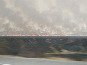 Enorme incendio forestal en la vía Santa Elena-Guayas