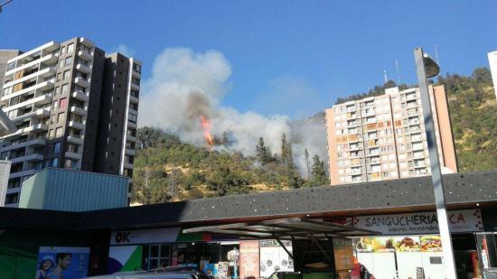 Incendio arrasa 12 hectáreas en principal 'pulmón verde' de Santiago de Chile