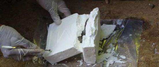Decomisan más de 90 kilos de cocaína provenientes de Ecuador en zona franca alemana