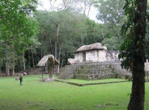 Los mayas ya criaban y vendían perros hace 2.500 años