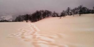 Fenómeno climático: Nieve amarilla y lluvia roja en el sur de Rusia y Ucrania