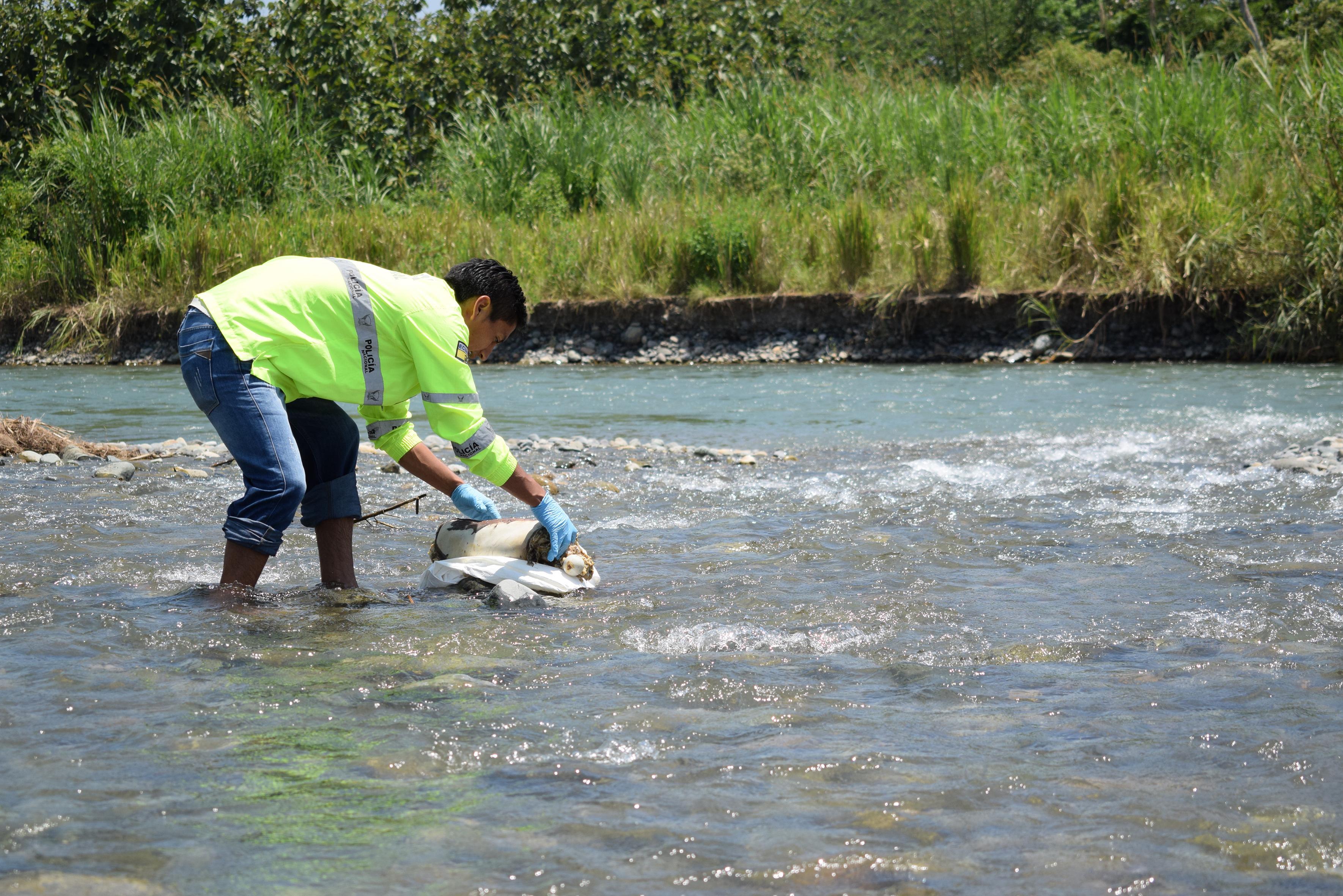 Otra extremidad en el río