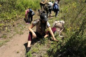 Día de la Tierra: Ecuador reforesta una reserva geobotánica de los Andes
