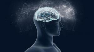 El cerebro humano se actualiza para acostumbrarse a situaciones inesperadas