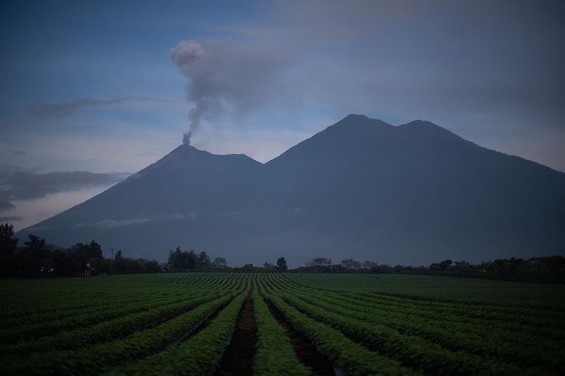 Erupción volcán Fuego dañó cultivos agrícolas de 30.221 familias en Guatemala