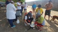 Realizarán jornada de esterilización para perros y gatos en Jipijapa