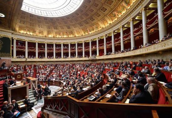 Francia da un primer paso para eliminar la palabra ''raza'' de su Constitución