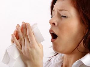 Evita interrumpir los estornudos