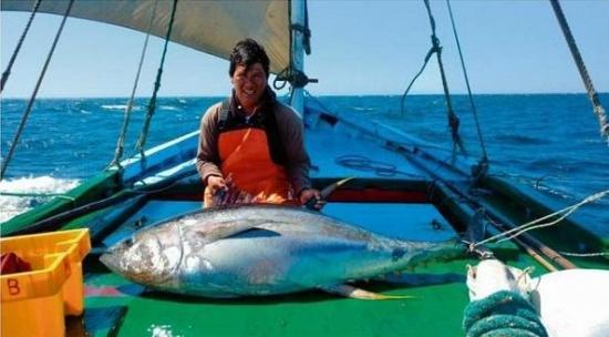 Perú declara patrimonio de la nación la pesca con veleros artesanales